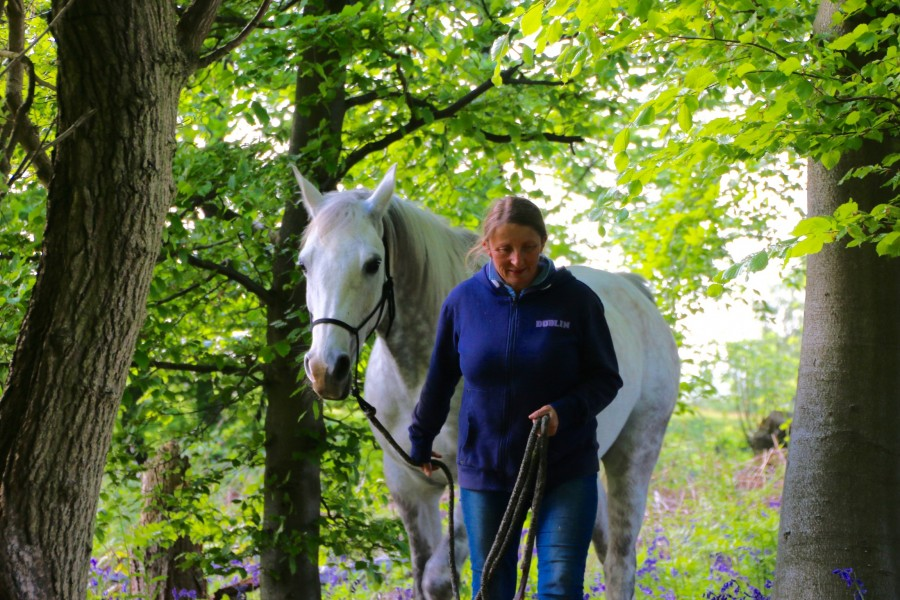 Read more about the article The Non Ridden Equine