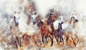 Read more about the article Equi Anima Essence – part 3 Deepening its Meaning