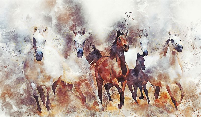 You are currently viewing Equi Anima Essence – part 3 Deepening its Meaning